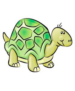 Интересные сведения о черепах